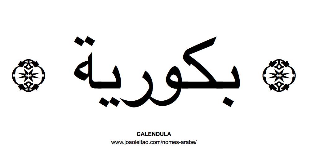 Flores em árabe: CALENDULA em árabe