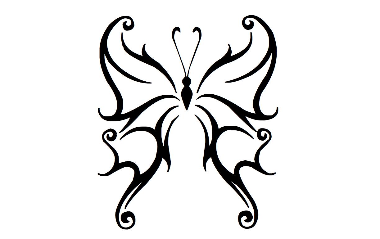 Dessin Papillon Tatouage tatouages papillon - modele & dessins - votre prénom écrit en arabe