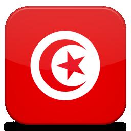 Bandeira Tunisia