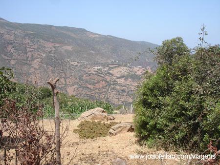Cannabis Montanhas do Rif, Marrocos