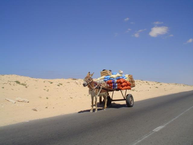 Burrito carregado com tralhas em Nouadhibou Mauritania