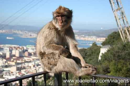 Fotografias de Gibraltar
