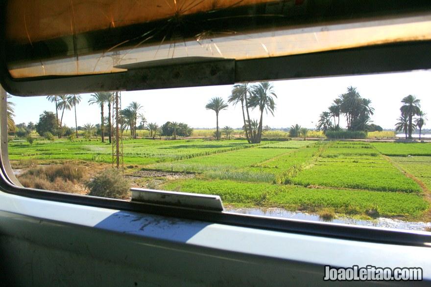 Paisagem da viagem de comboio Aswan até Luxor