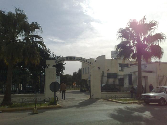 Institut Pasteur du Maroc em Casablanca Marrocos