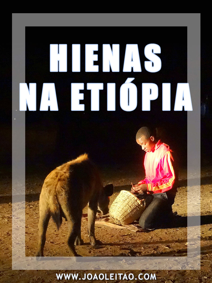 ALIMENTAR HIENAS ETIÓPIA
