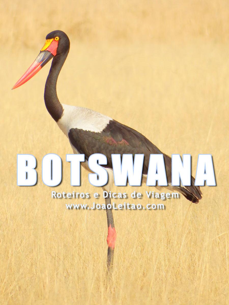 Visitar Botswana – Roteiros e Dicas de Viagem