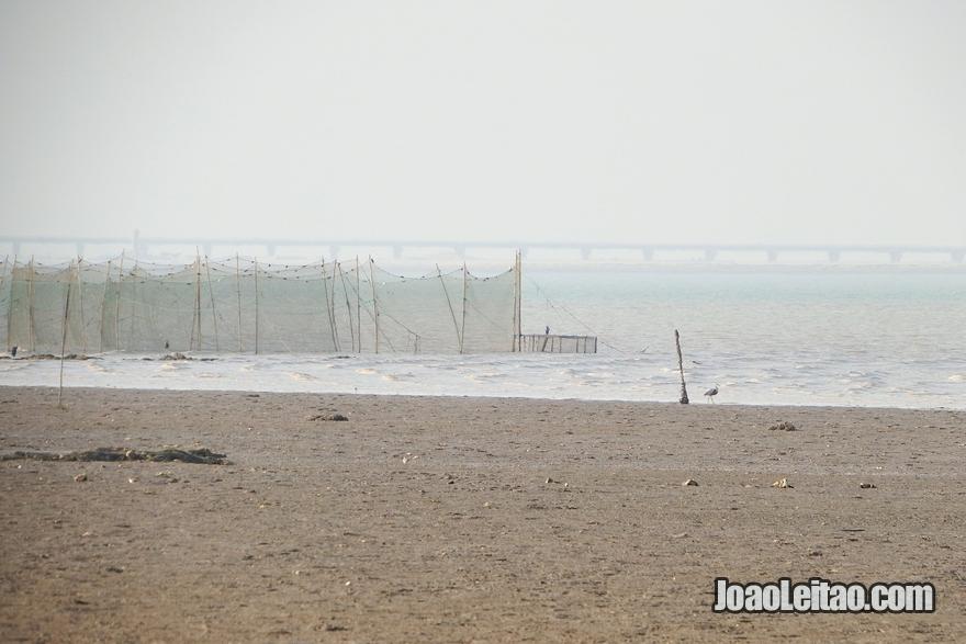 Redes de pesca na foz do rio Eufrates no Kuwait