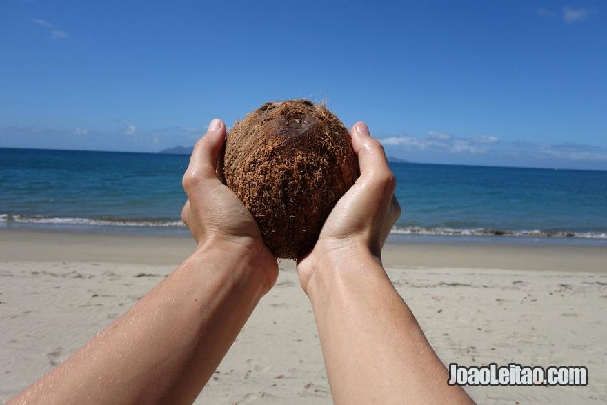 Apanhar cocos na praia