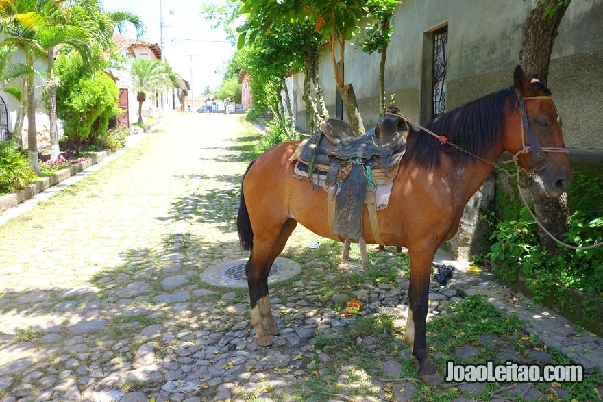 Cavalo em Suchitoto