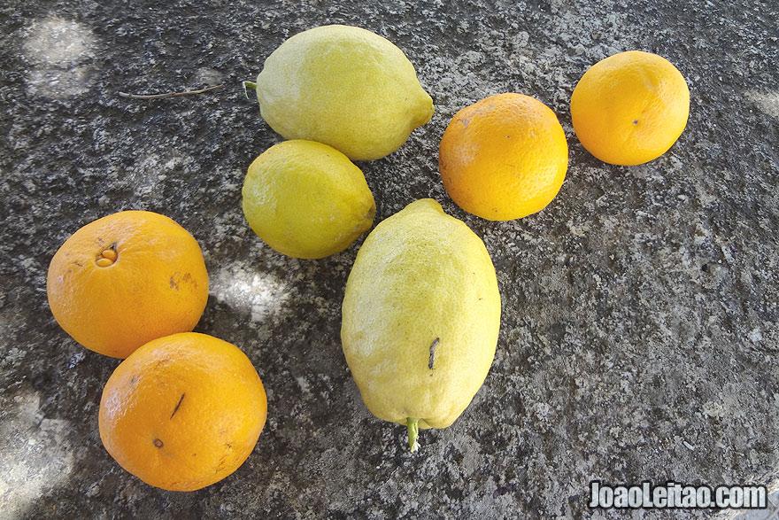Laranjas e limões de Monsanto