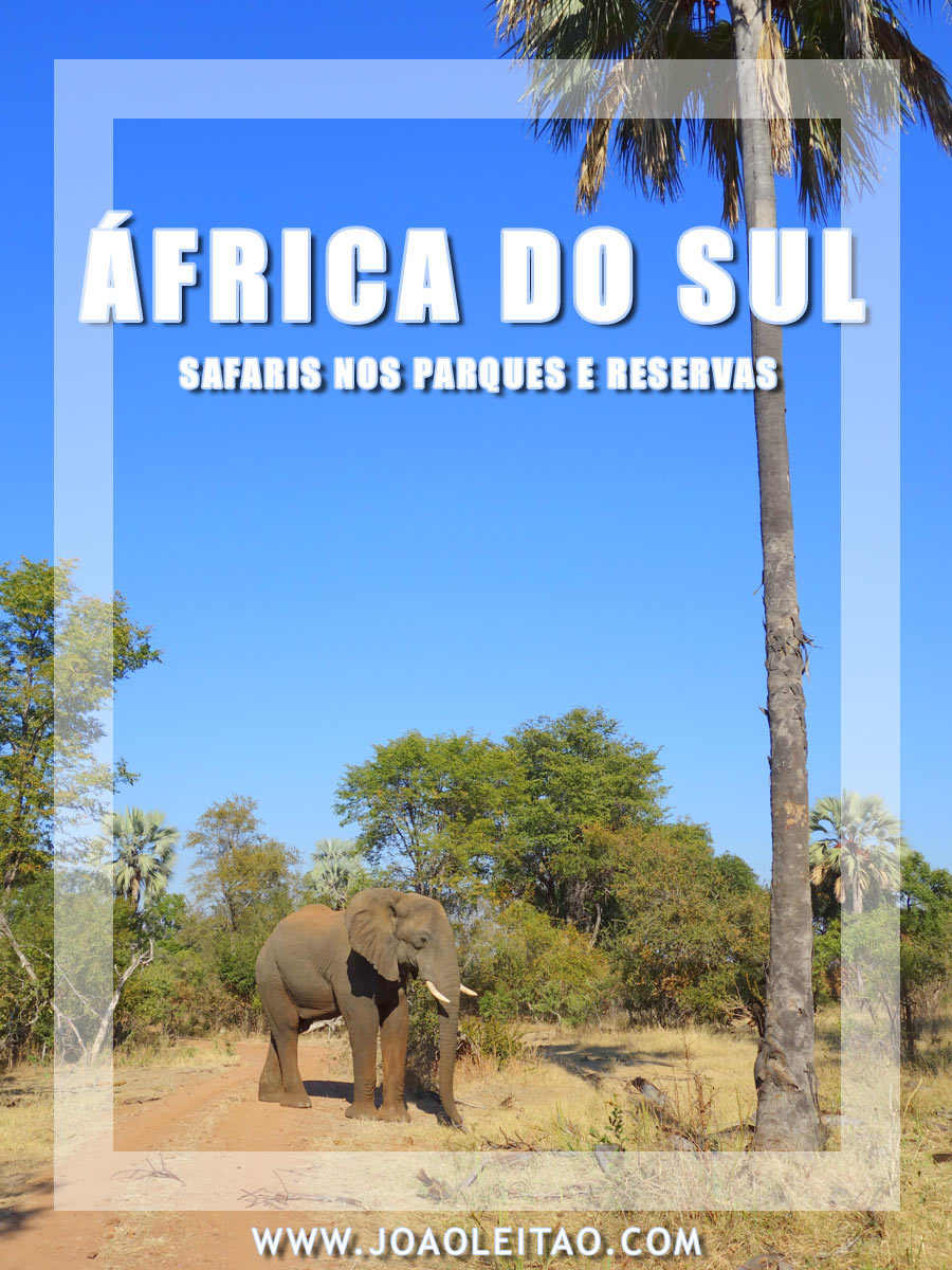 SAFARI ÁFRICA DO SUL