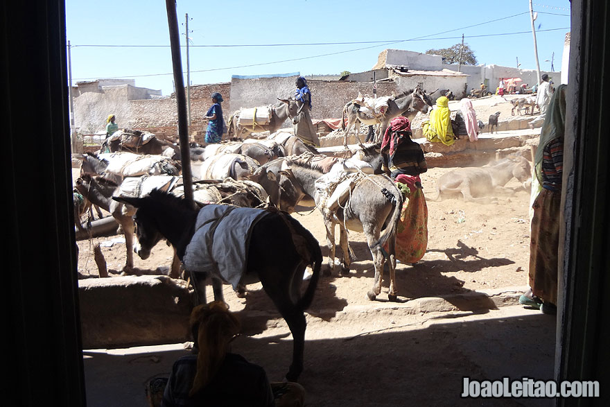 Visitar Harar, Republica Democratica Federal da Etiopia
