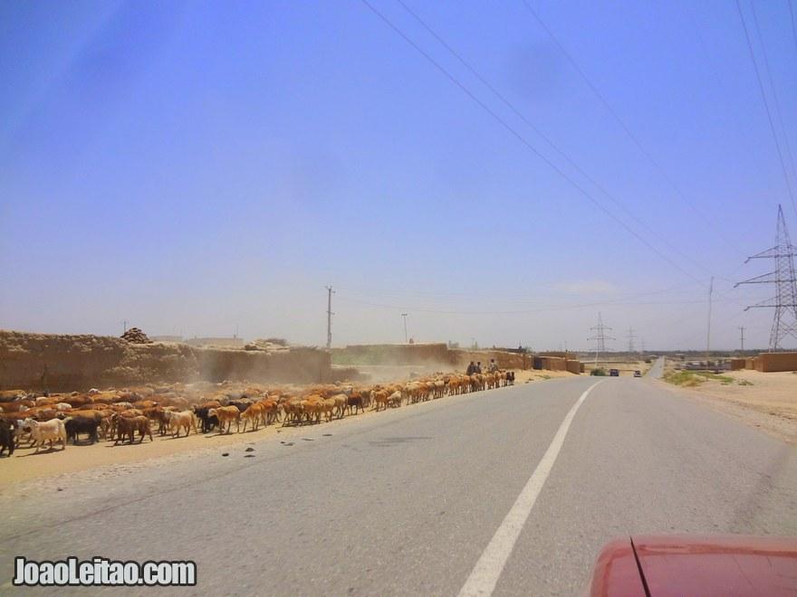 Estrada da fronteira do Tajiquistão para Kunduz