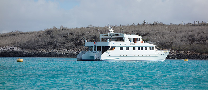 Catamaran Galapagos Cruise