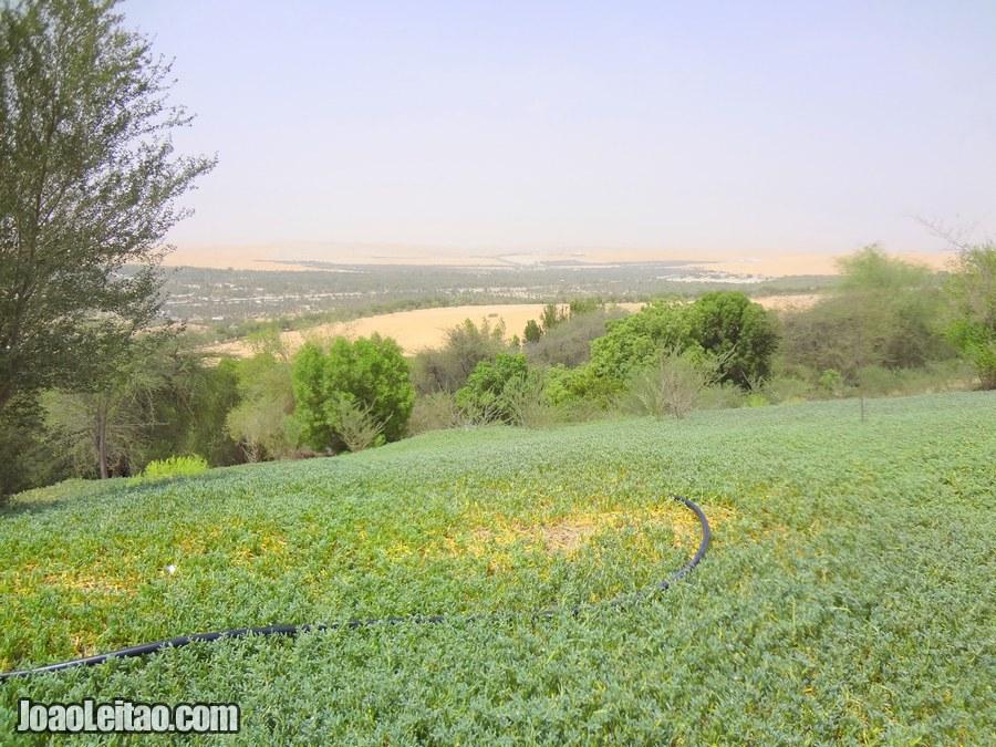 Liwa Oasis United Arab Emirates
