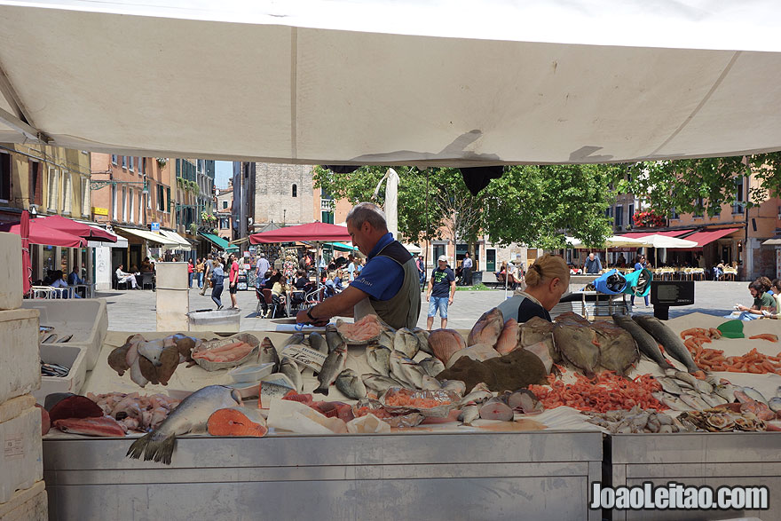 Venice street fish market