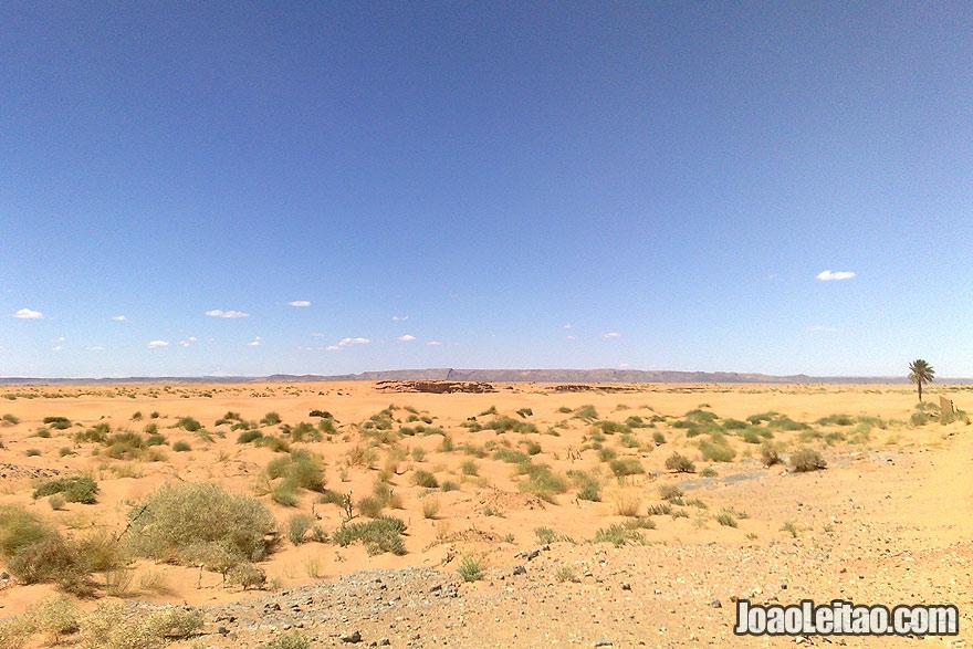 Merzouga desert tracks