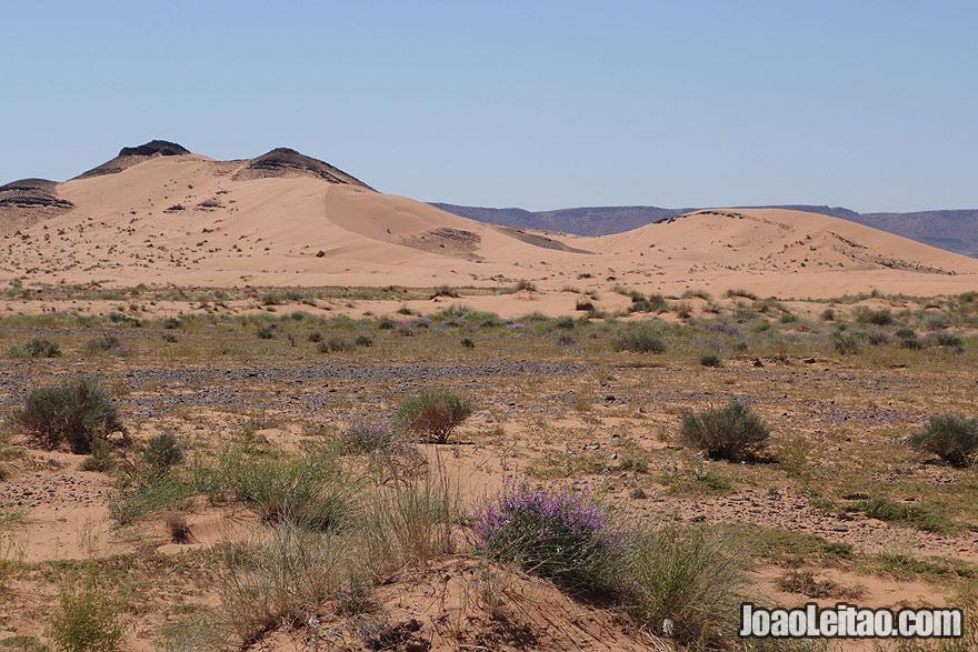 Paisagem do Deserto de Saara em Marrocos