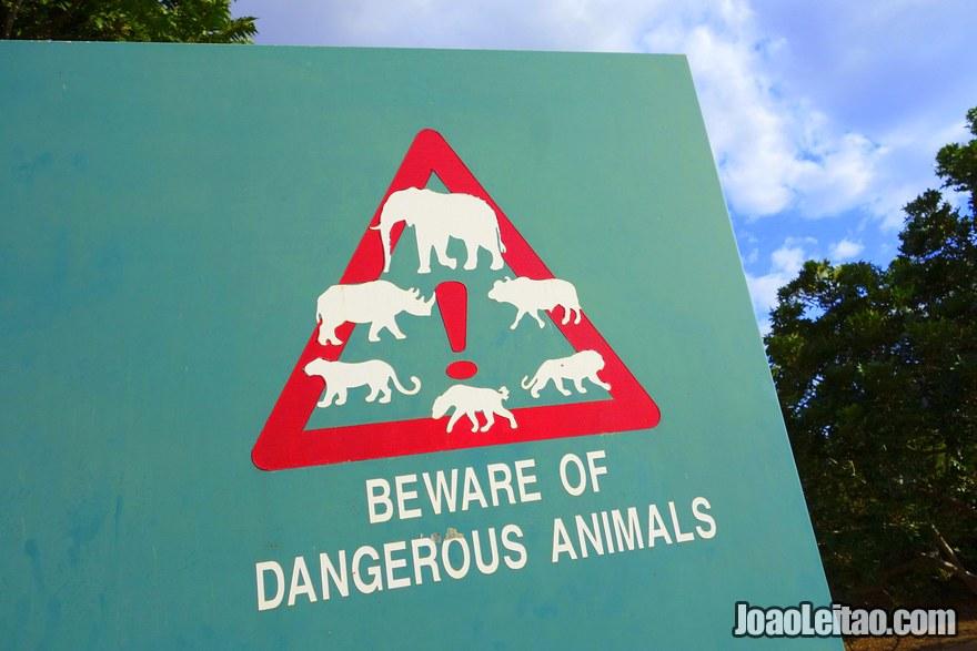 Beware of dangerous animals road sign