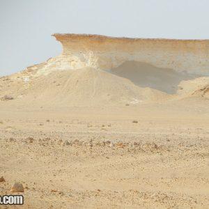 Al Reem Biosphere Reserve in Qatar
