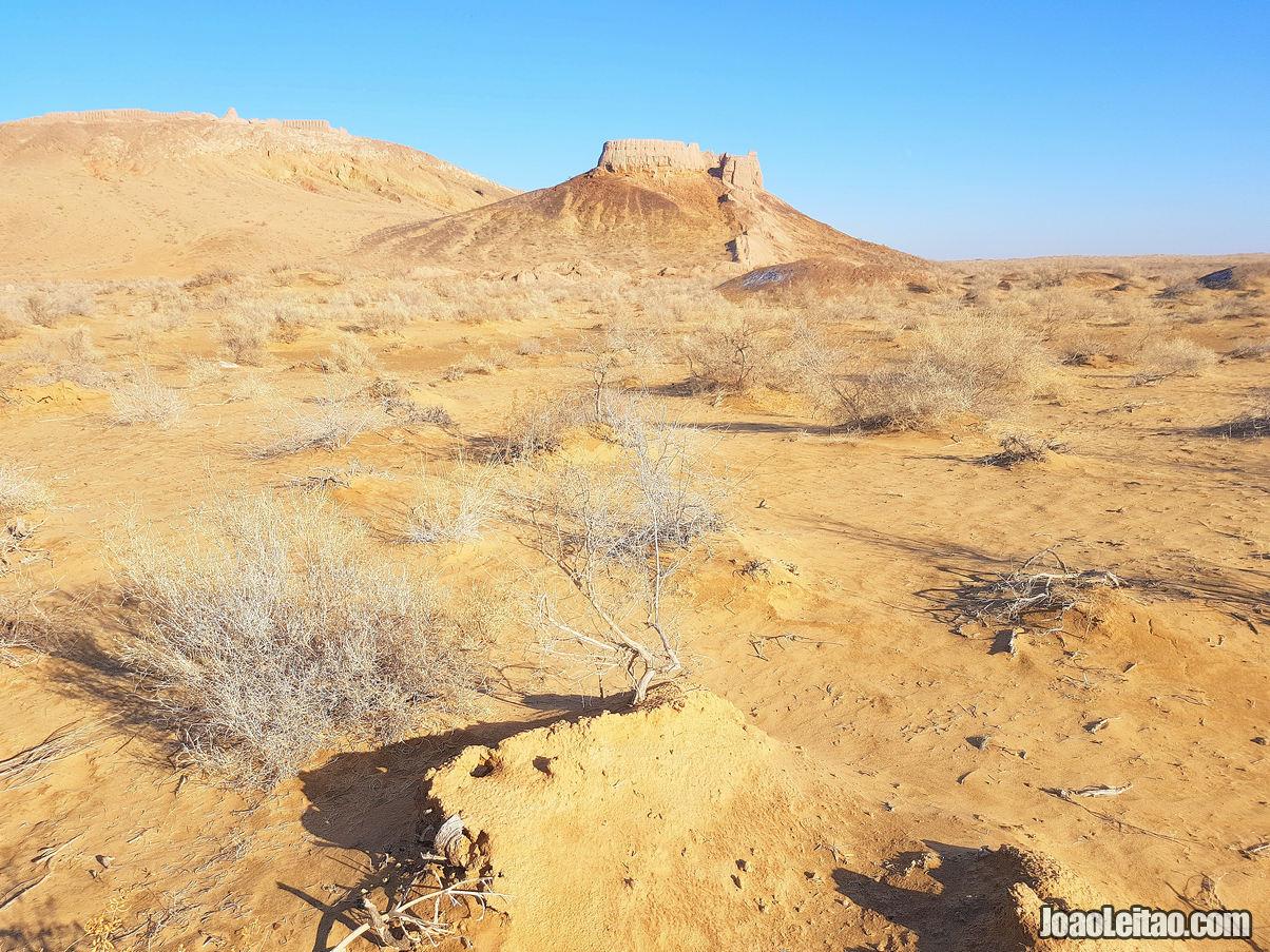 DESERT CASTLE UZBEKISTAN
