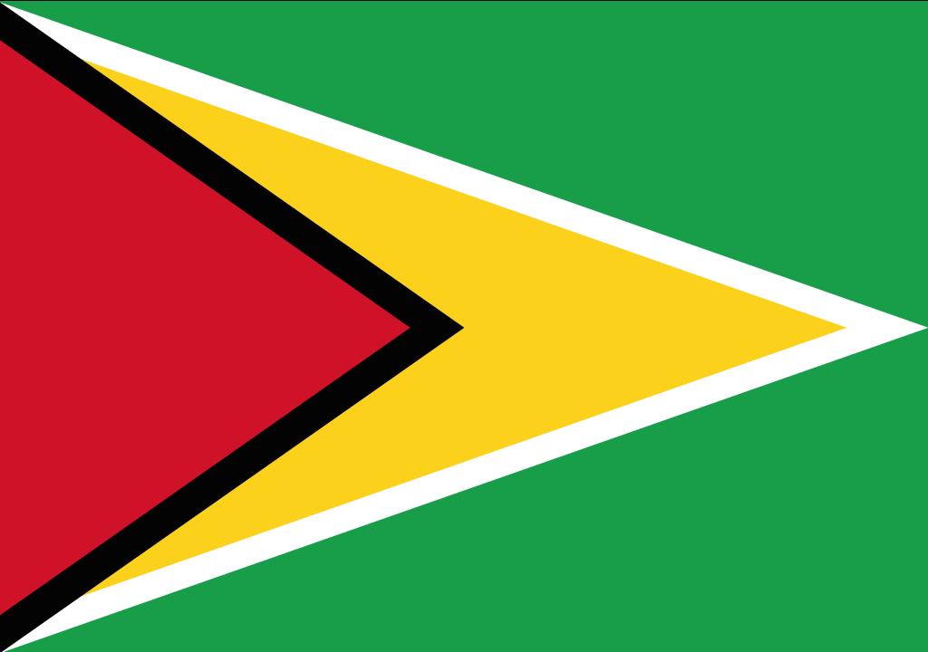 BANDEIRA DA GUIANA