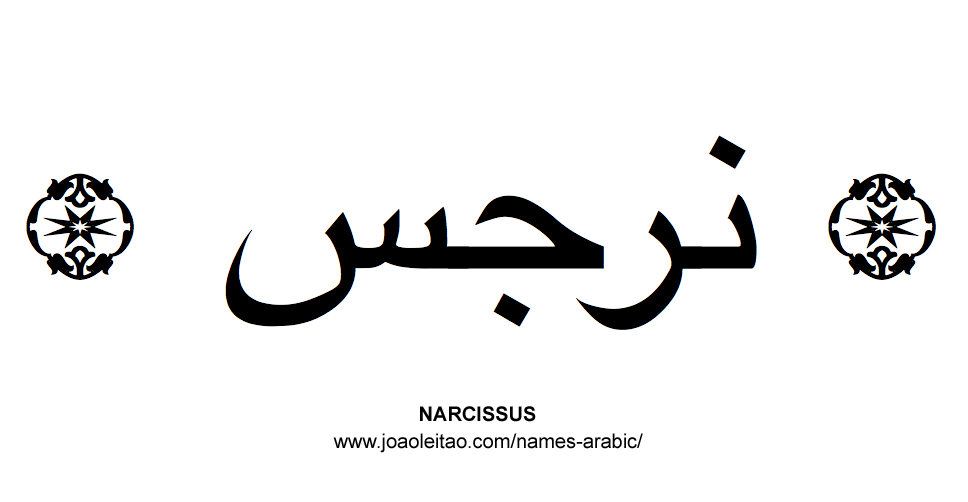Flowers in Arabic: Arabic NARCISSUS
