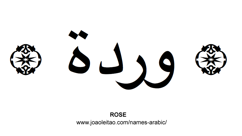 Flowers in Arabic: Arabic ROSE