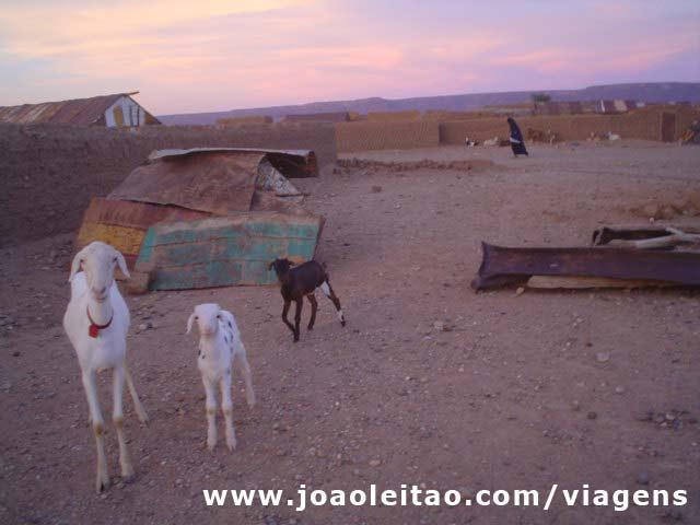 Umas cabrinhas na casa do Moulay Sharif, Mauritânia