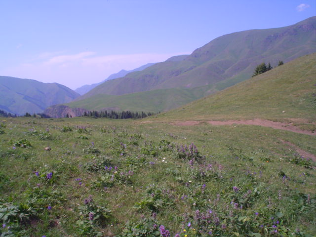 Parque Nacional de Ile-Alatau, Cazaquistão - Ásia Central 16