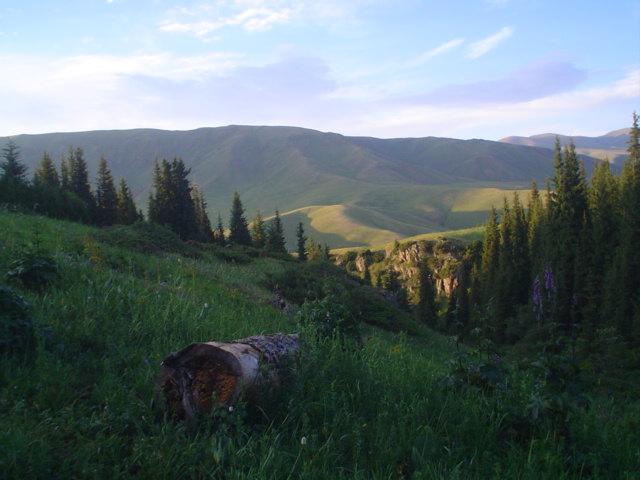 Parque Nacional de Ile-Alatau, Cazaquistão - Ásia Central 26