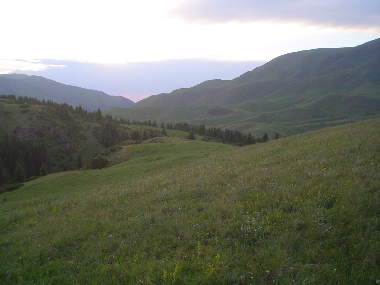 Parque Nacional de Ile-Alatau, Cazaquistão - Ásia Central 35
