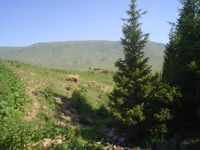 Parque Nacional de Ile-Alatau, Cazaquistão - Ásia Central 38