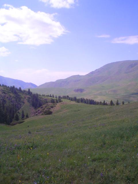 Parque Nacional de Ile-Alatau, Cazaquistão - Ásia Central 3
