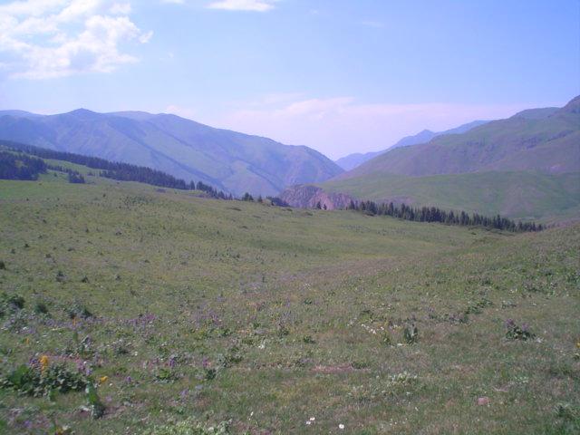 Parque Nacional de Ile-Alatau, Cazaquistão - Ásia Central 8