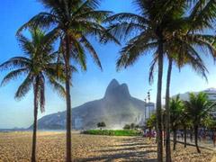 Viver no Brasil