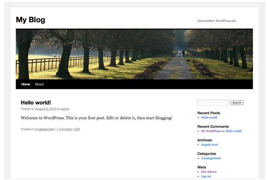 Site predefinido do WordPress
