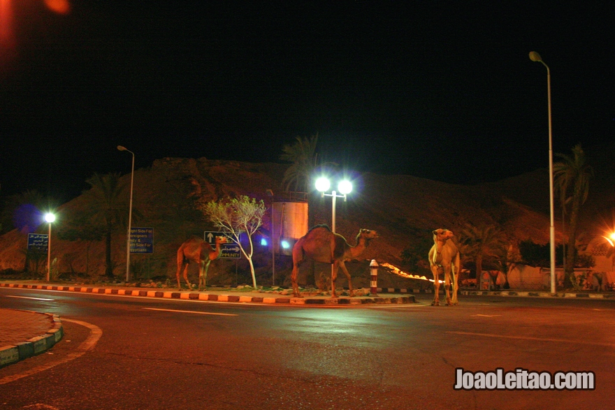 Fronteira Egito Israel