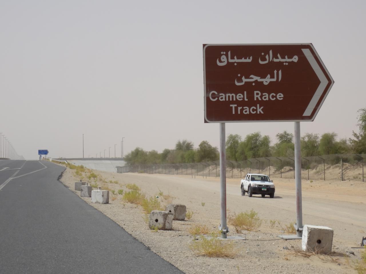 Fotografia de sinal de trânsito nos Emirados Árabes Unidos