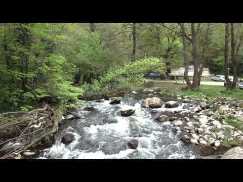 Vídeo do rio no Mosteiro Dryanovski, Bulgária 2