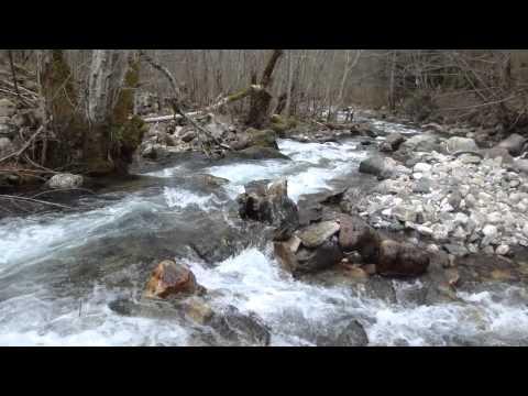 Vídeo de rio perto do Mosteiro de Rila, UNESCO Bulgária 1