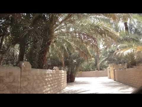 Vídeo Conduzir no Oásis Palmeiral de Al Ain, Abu Dhabi, Emirados 2