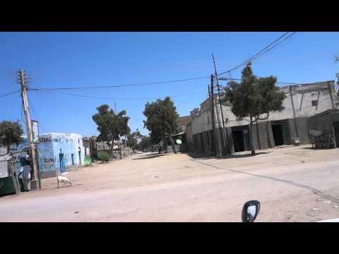 Vídeos do mercado de animais em Hargeisa, Somalilândia 11