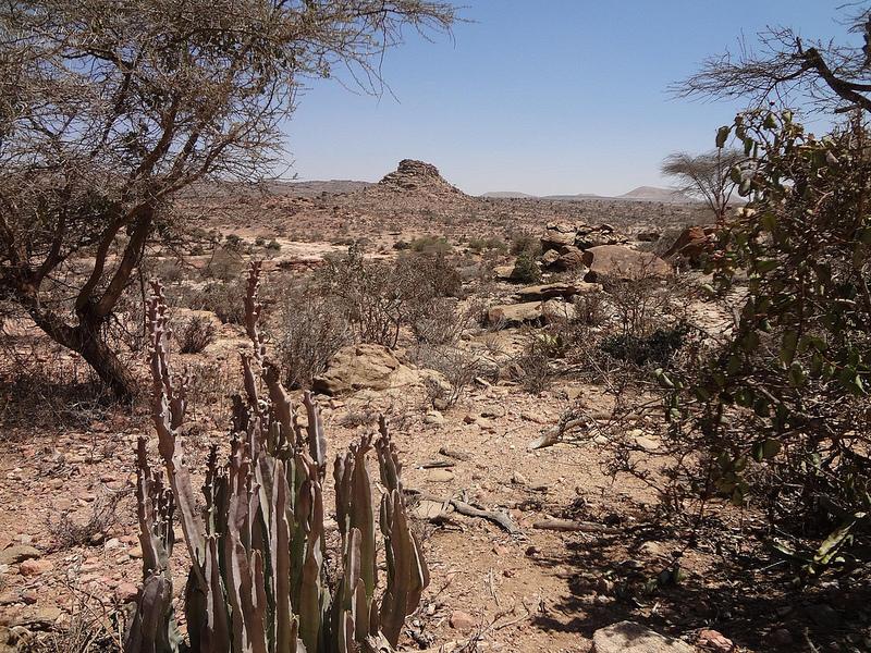 5 coisas para fazer na Somalilândia 1