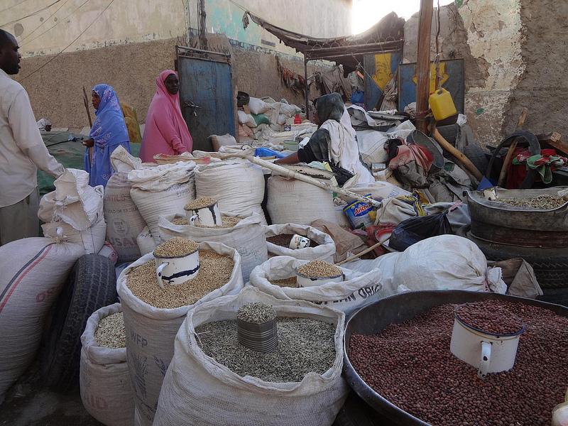 Vídeos do mercado de animais em Hargeisa, Somalilândia 18