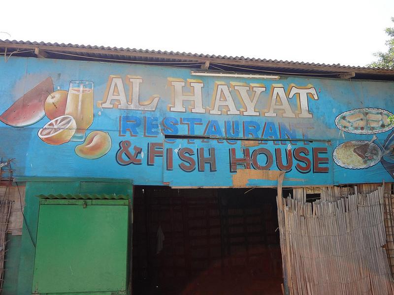 Vídeos do mercado de animais em Hargeisa, Somalilândia 22