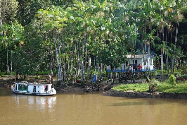 Subir ou descer o Rio Amazonas no Brasil? 1