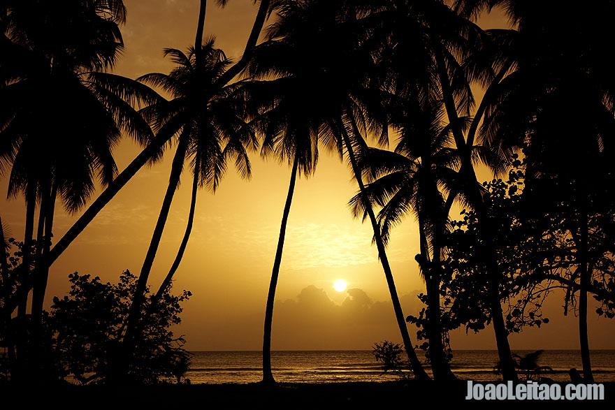 Praia de Pigeon Point Beach, Visitar Trinidad e Tobago