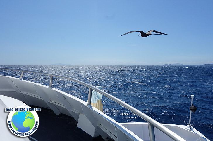 Iate nas Galapagos Equador
