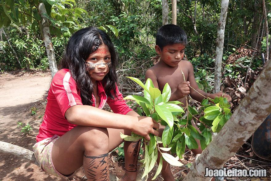 Crianças na selva amazónica